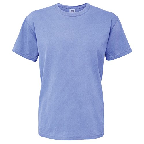 Comfort Colors Mens Heavyweight T-Shirt (S) (Periwinkle)