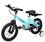 R for Rabbit Tiny Toes Rapid Plug n Play Tube Type Speed 14T inches with Single Structure 48.00, Magnesium alloy & Disc Brakes Kids Bike of 3 to 5 Years Boys & Girls (Blue)