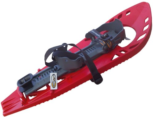 MORPHO - Raquetas de Nieve para Adulto Rojo, Gris Talla:Medi