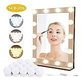 Kit de luces de espejo de vanidad EVILTO para espejo de Hollywood, 14 bombillas...