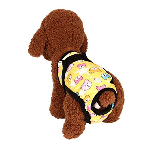 ZHONGCHENYI Pet Supplies Mascota Fisiología De La Salud del...