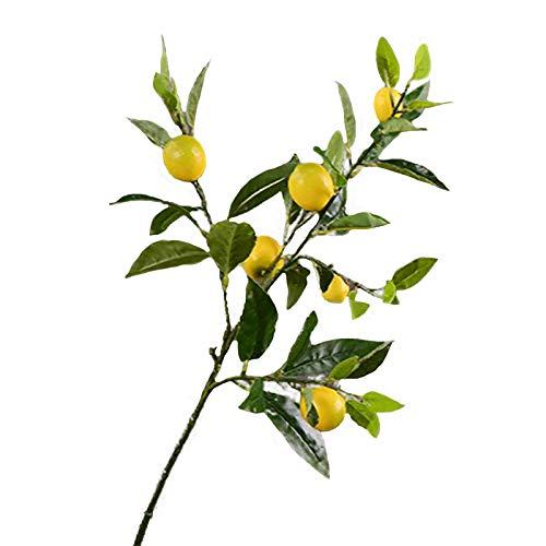 HLTER - Confezione da 2 rami artificiali di limone, 91,4 cm, colore giallo, grande e piccolo, con foglie verdi, rami di frutta decorativi per casa, matrimoni, feste, fotografie, decorazioni