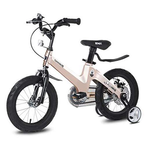 Bicicleta Infantil para niños y niñas a Partir de 4 años | Bici de montaña 12/14/16/18 Pulgadas con Frenos | 12/14/16/18