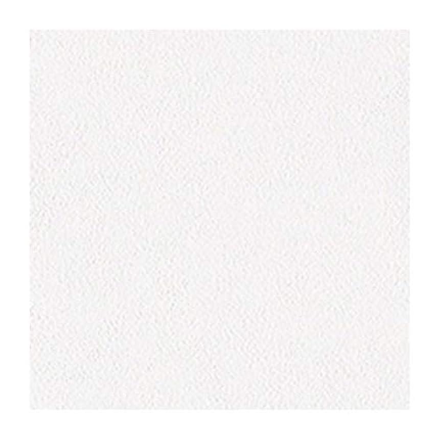 小道具克服する動的サンゲツ FAITH フェイス 糊なし/のり無し壁紙 クロス フィルム汚れ防止壁紙 石目調 TH30406 (旧TH8872)【1m×注文数】 巾92cm | 防かび 汚れ防止 抗菌 表面強化