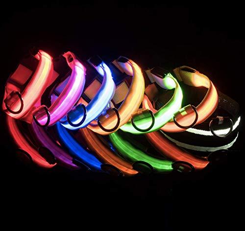 ZERAY® .Leuchthalsband Hund. hundehalsband. Halsband Hund. hundehalsband Leuchtend. Hunde leuchthalsband. leuchtie Hund. Halsband.(S, Pink)