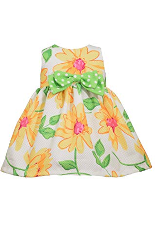 Bonnie Jean Easter Dress Spring Daisy Dress for Baby Toddler and Little Girls (6-9 Months)