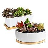 ARVINKEY - Macetas de cerámica para plantas suculentas, 1 maceta rectangular + 1 maceta redonda, juego de 2 pequeños cactus, para bonsái, con agujeros de drenaje, bandeja de bambú (sin planta)