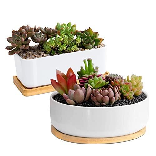Weiße Keramik Sukkulenten Blumentöpfe, ARVINKEY 1 rechteckiger Blumentopf + 1 runder Übertopf, 2er Set kleine Kaktusbehälter, Bonsai-Töpfe, Blumentöpfe mit Abflusslöchern Bambus-Tablett (ohne Pflanze)
