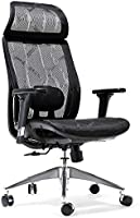 Amazon Brand - Umi Ergonomic office chair, Breathable High-Back Mesh Desk Chair with Adjustable Lumbar Support, 3D...