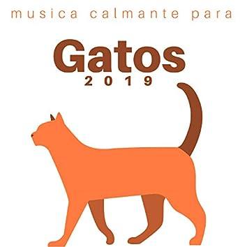 Musica Calmante para Gatos 2019 - Sonidos Relajantes Zen