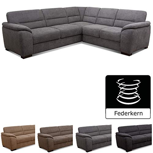 Cavadore Eck-Sofa Moontegoo / Wohnzimmer-Couch mit Federkern / 256 x 88 x 227 cm (BxHxT) / Flachgewebe grau