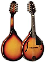 Best morgan monroe rocky top mandolin Reviews