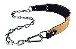 Dominion Strength Training Leather Dip Belt with Chain