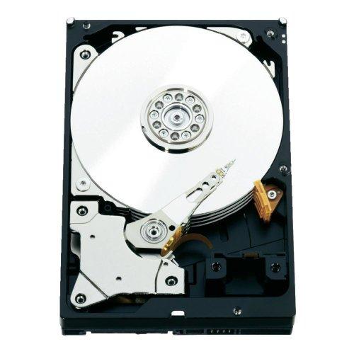 Western Digita WD2000FYYZ RE 2TB interne Festplatte (8,9 cm (3.5 Zoll), 7200rpm, 64MB Cache, SATA III)