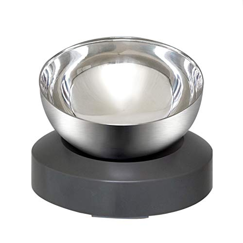 Wisedog Dog Cat Bowls:Raised Tilted Cat Food Bowl,Stainless Steel Cat Dish Anti Vomiting Elevated with Stand,Ergonomic Lifted Slanted Angle Pet Feeding Bowls for Cats and Dogs