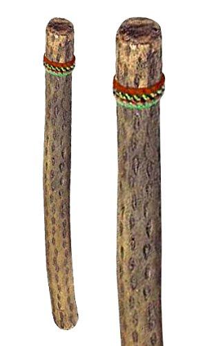 Regenmacher aus Chile Länge 75 cm Ø 4-6 cm Regen imitieren Regenstock Effekt Naturgeräusch Klang Percussion Weltmusik Meditation