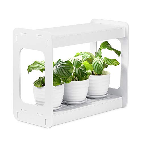 Sealantic Ultra-Wide LED Herb Garden Natural Growth Solution