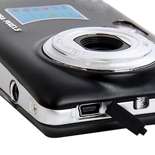 Glidecam GLXR2 XR-2000 Schwebestativ für Camcorder