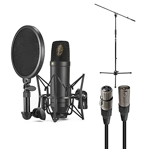 rode vocal microphones Rode NT1 Cardioid Condenser Microphone Bundle with Mic Stand, Mic Cable, Pop Filter, and Polishing Cloth