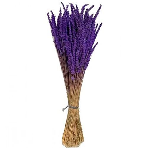Ramo Lavanda preservada. Paquete 150 gr o 200 Tallos Aprox. Medida 45 cm. Lavanda Natural preservada. Flores preservadas Lavanda. Fabricado en España.