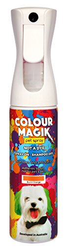 Petway Petcare Pet Paint Spray for Dogs 280 Ml – Color Safe Temporary Dog Hair Color Spray - Non Toxic, Eco Friendly, Propellant Free Dog Paint Burnt Orange