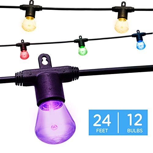 Enbrighten 40393 Color Changing Bistro, Outdoor String Lights, 24ft 12 Bulbs, White, Multi