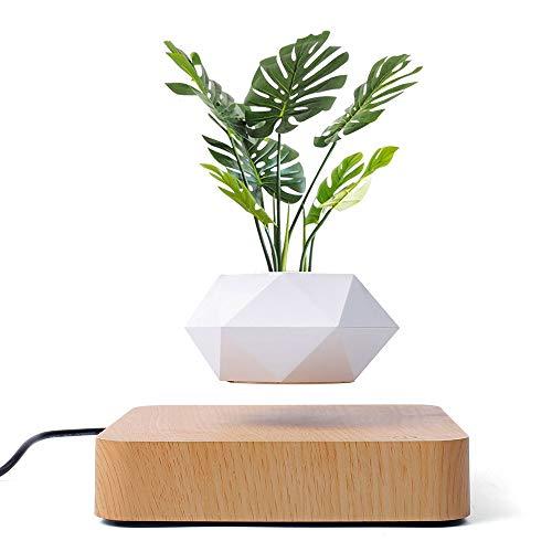 Schwebender Luft-Bonsai-Topf,Magnetischer Schwebende Pflanze-Topfpflanzen-Luftverzierungen,Magnetschwebe-schwimmender Topf,Für Haus & Garten Bürodekoration, Schreibtischdekoration