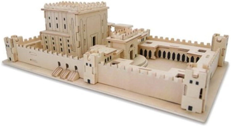 te hará satisfecho 3D Puzzle of the Temple by by by Art Judaica  venta al por mayor barato