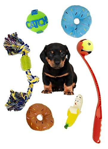 Juego de juguetes para perros, juego de 6 juguetes suaves sonoros, peluche, cuerda, lanza pelota, juguetes sonoros para perros cachorros