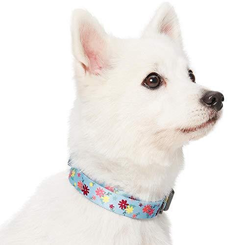 Amazon Brand - Umi. Essential Made Well - Collar para Perros con Estampado de Flores S, Cuello 30-40 cm, Collares Ajustables para Perros (Azul bebé)
