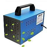 O3 Prime Blue - Generador de ozono Industrial 36,000mg /HR 220v, Limpiador de...