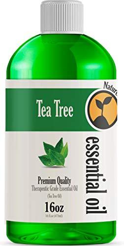 16oz - Bulk Size Tea Tree Essential Oil (16 Ounce Total) - Therapeutic Grade Essential Oil - 16 Fl Oz Bottle