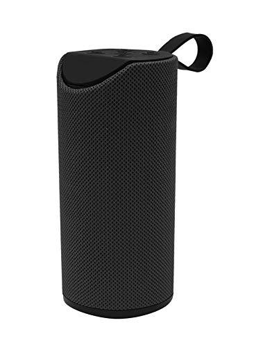 BLAUPUNKT- BLP3770-133 Tragbarer Lautsprecher, Bluetooth, 10 W, Schwarz