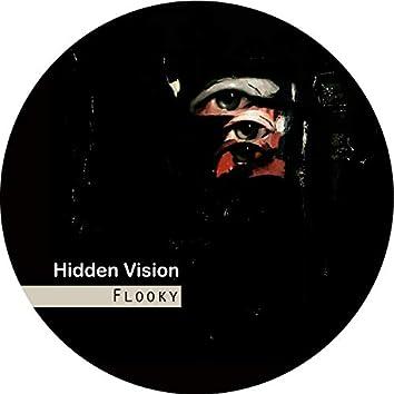 Hidden Vision