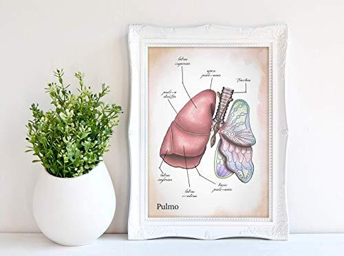 Kunstdruck - Lungenflügel - DIN A3, DIN A4 - Geschenk, Anatomy, Deko, Medizin, Arzt, Chirurg, Lunge, Schmetterling