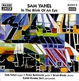 Songtexte von Sam Yahel - In the Blink of an Eye