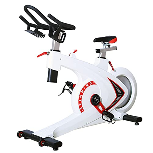 Spinning Bike Exercise Bike for Home Gym, Indoor Exercise Stationary Bike for Adults and Kids, Spin Bike with Adjustable Seat and Handle (Color : White)