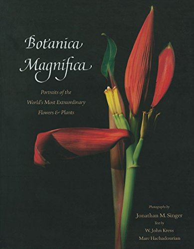 Botanica Magnifica: Portraits of the World's Most Extraordinary Flowers and Plants