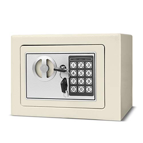 Flexzion Digital Safe Box 9