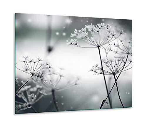 Herdabdeckplatte Ceranfeld 1 teilig 60x52 Pusteblume Weiß Kochplatten Glas Deko
