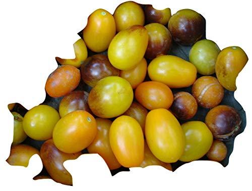 NEUHEIT 2015/16 INDIGO KUMQUAT: Mischung a. Cherry u. Indigo Rose, 20 Samen, von unserer ungarischen Farm samenfest, nur organische Dünger, KEINE Pesztizide, BIO hu-öko-01