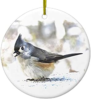 Lplpol Sweet Tufted Titmouse Bird Ornament for Gift Commemoration Day