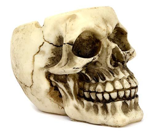 Cenicero de cabeza de calavera 12 cm