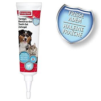 Beaphar – Gel Dentifrice pour Chien et Chat – Nettoyage des Dents sans brossage ni rinçage – Combat la Plaque Dentaire, la Formation de tartre et la Mauvaise haleine – Tube 100 g