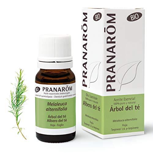Pranarom Aceite Esencial de Árbol del Té, Bio, Hoja, Transparente, 10 Mililitros