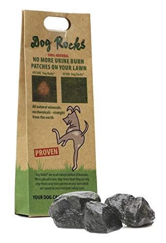 Dog Rocks 100% natürlicher Urinverbrennungspflaster - 200 g Beutel