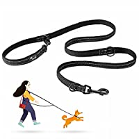 3 Size and 3 Color: The total length of our dog lead is 2 meter/6.6ft, which is available in three widths (S: 1.5cm/0.6in, M:2cm/0.8in, L: 2.5cm/1in) and a choice of Green, Black or Orange Multipurpose: There are 3 durable rings and 2 hooks on the le...