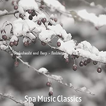 Shakuhachi and Harp - Ambiance for Body Wraps