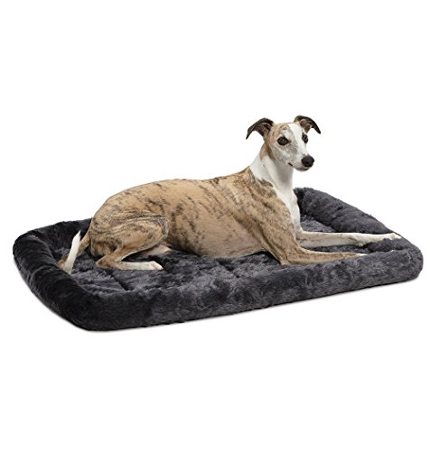 36L-Inch Gray Dog Bed or Cat Bed w/ Comfortable Bolster | Ideal for Medium / Large Dog Breeds & Fits a 36-Inch Dog Crate | Easy Maintenance Machine Wash & Dry | 1-Year Warranty 20% Alert AmazonPets Beds breed by Cat customers Dog Equipment Food for from Homes items Low Mastiffs Midwest on Pet pets Popular Profile Promotion Rate Return Save Savings Selection Supplies to Top up with