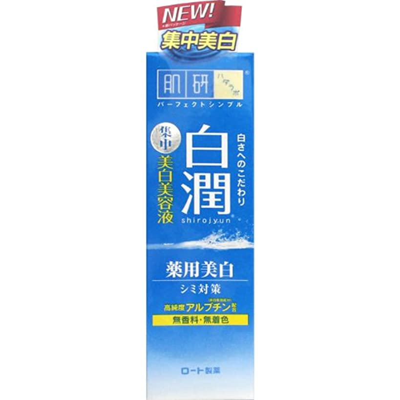 浜辺驚いたボーナス【医薬部外品】肌研(ハダラボ) 白潤 薬用美白美容液 30g